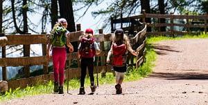 Best Hiking Trails